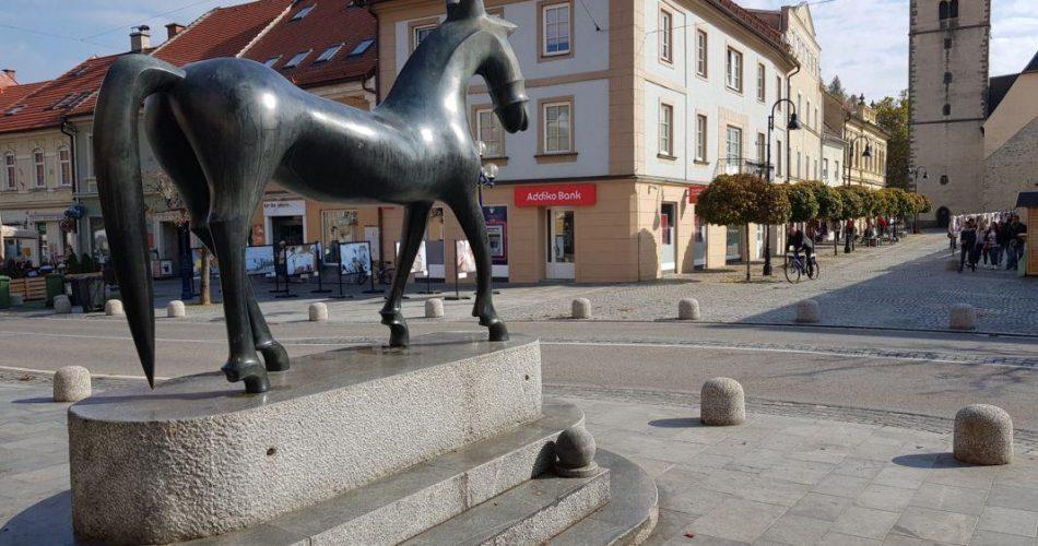 Slovenj gradec konj trg